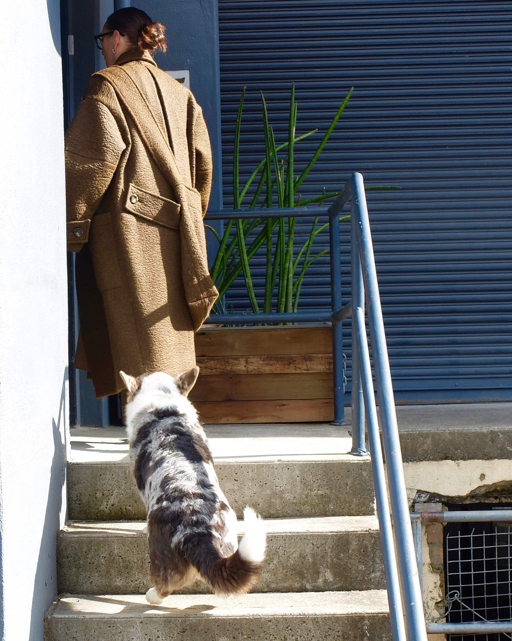 Lee outside her studio in Sydney, Australia with Corgi ,Ted.